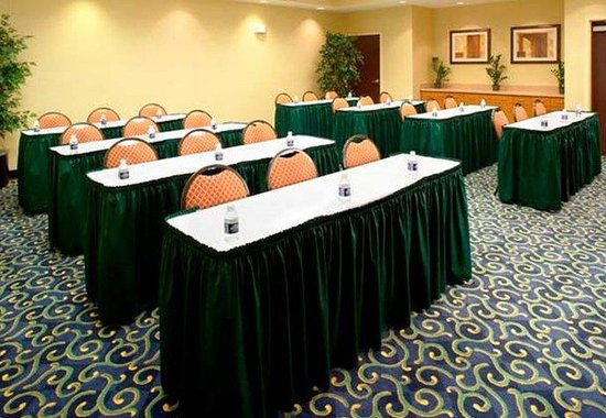 SpringHill Suites Gainesville: Meeting Room