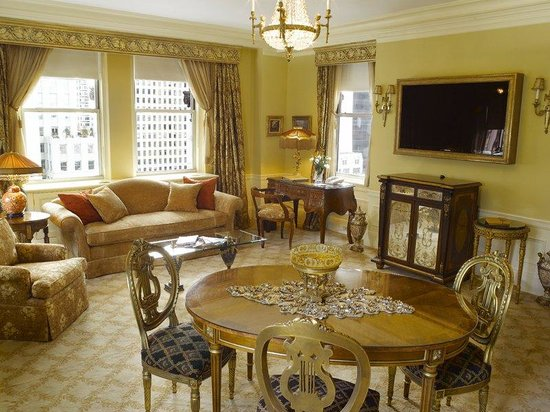 The Sherry-Netherland Hotel : Living Room 