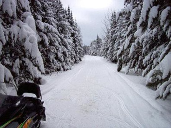 Minocqua, WI: Snowmobile Trail