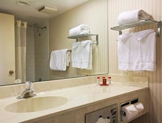 Ramada Hotel & Suites Englewood/Denver South: Bathroom