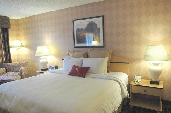 Union City, CA: King Guest Room