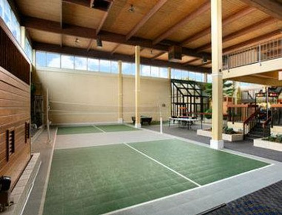 Overland Park, KS: Badminton
