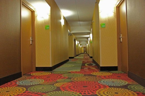 Holiday Inn Charlotte-University Place: Beautifully Renovated Corridors