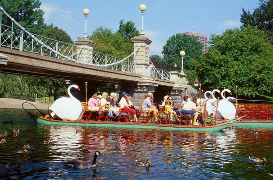 Milford, MA: Beautiful Swanboats in Boston&#39;s Public Garden!