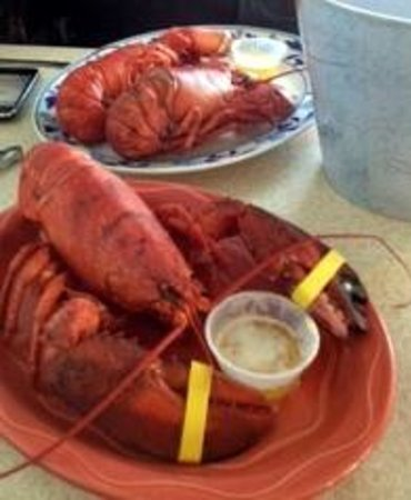 Scarborough, ME : Lobstaaaaaaah 