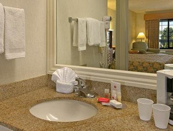Ramada Inn & Suites Costa Mesa/Newport Beach: Bathroom