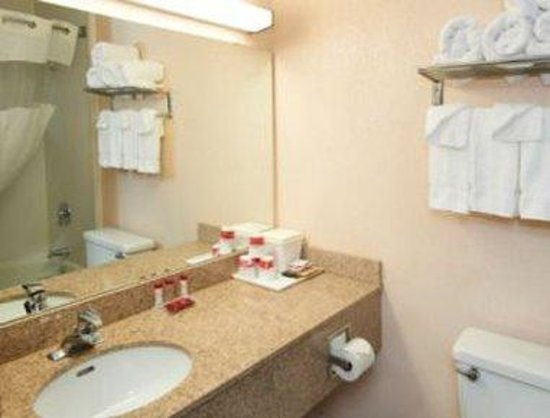 Ramada Inn Tuscaloosa: Bathroom