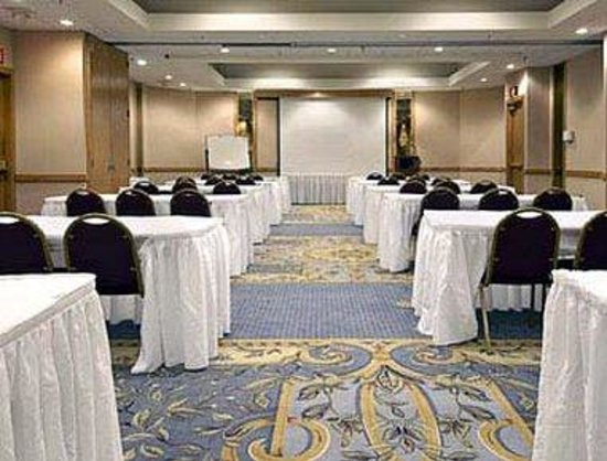 Ramada Inn Blue Ridge: Meeting Room