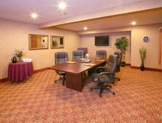 Ramada Inn: Conference Room