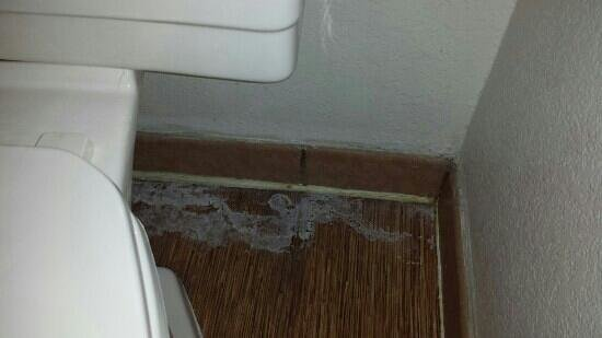 Colby, KS: floor around toilet