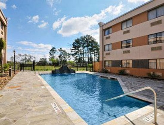 Ramada Houston Intercontinental Airport South: Pool