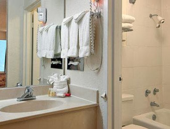 Ramada Airport-Cruise Port Fort Lauderdale: Bathroom
