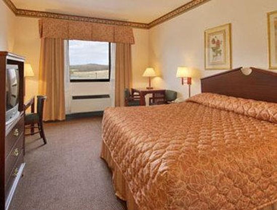 Ramada Limited and Suites - Franklin: Standard King Bed Room