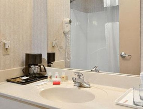 Ramada Limited and Suites - Franklin: Bathroom