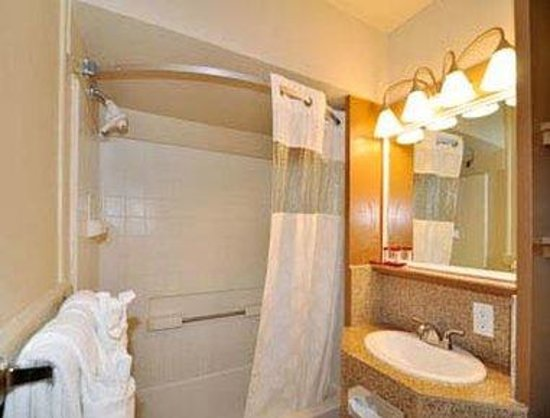 Ramada Limited Monterey Carmel: Bathroom