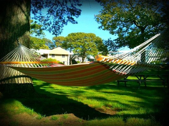 Eastham, MA: Hammocks