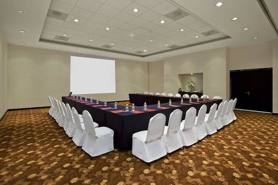 Fiesta Inn Oaxaca: Meeting Room