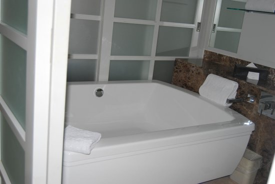 Paradisus Playa del Carmen La Perla: the Bath Tub, the Shower is a double shower with the W/C being seperate. Duel Sinks