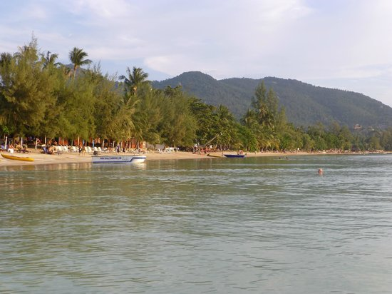Palm Leaf Resort: The beach from the sea