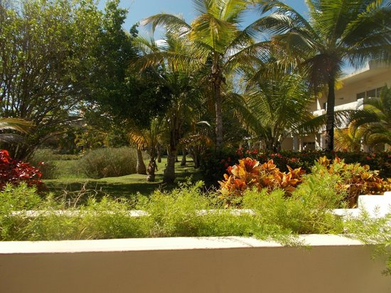 Gran Melia Golf Resort Puerto Rico: View from patio off of our room