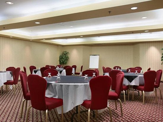 Ramada Niagara Falls: Meeting Room