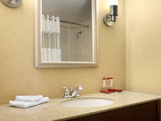 Ramada Niagara Falls: Bathroom