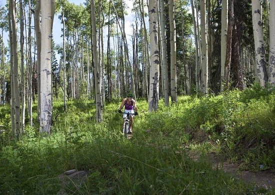 The Osprey at Beaver Creek, A RockResort : Mountain Biking