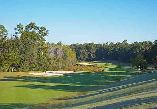 Fairfield Inn &amp; Suites Orange Beach: Rock Creek Golf Course