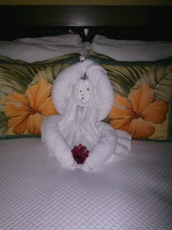 Nayara Hotel, Spa & Gardens : Monkey towel