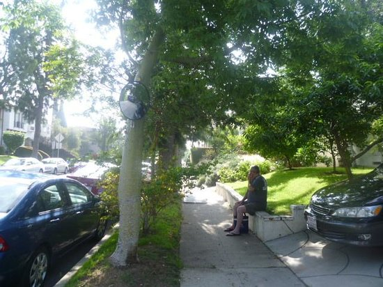 Garden Cottage B & B: Tree Lined Street