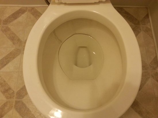 how to clean black toilet ring