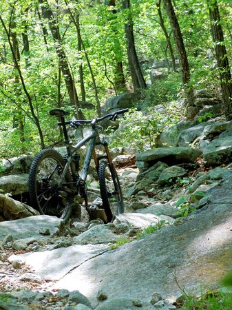 Brevard, Kuzey Carolina: Pilot Rock Trail