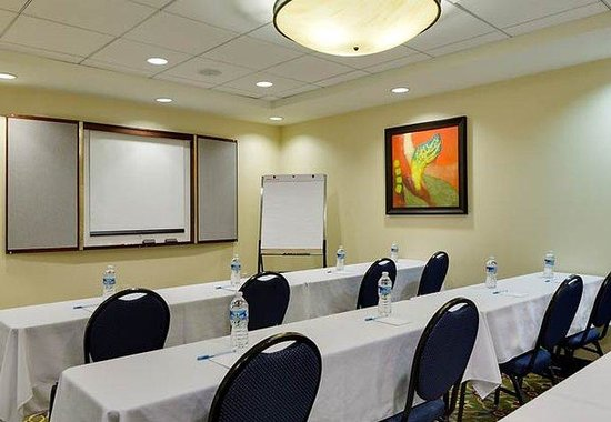 SpringHill Suites by Marriott Baltimore Inner Harbor: Meeting Room