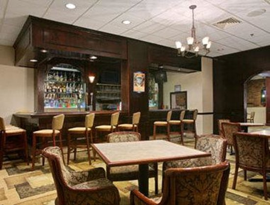 Ramada Plaza Albany: Lounge