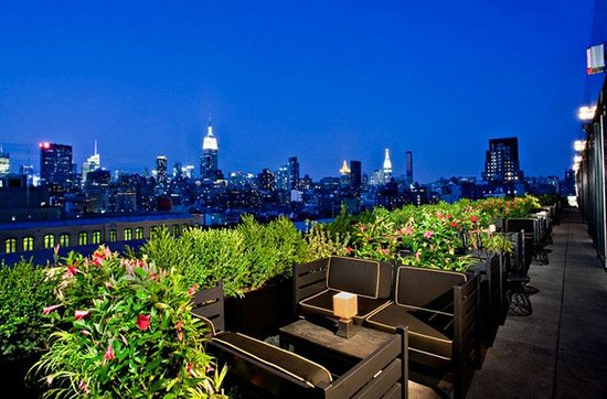 Dream Downtown: Terrace