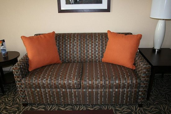 Ardmore, OK: Sleeper Sofa