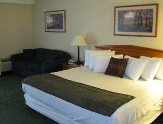 Ramada Hotel &amp; Conference Center : One King Bed Room 