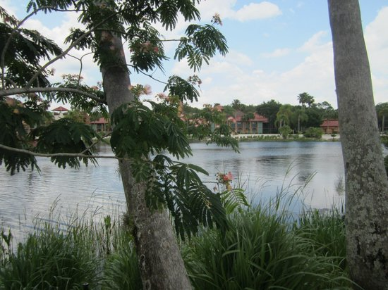 Disney's Coronado Springs Resort: View of Cabanas from walkway