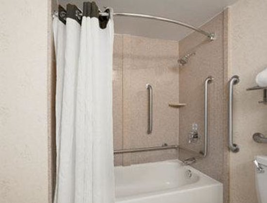 Ramada Plaza Hotel - Downtown Convention Center: ADA Bathroom