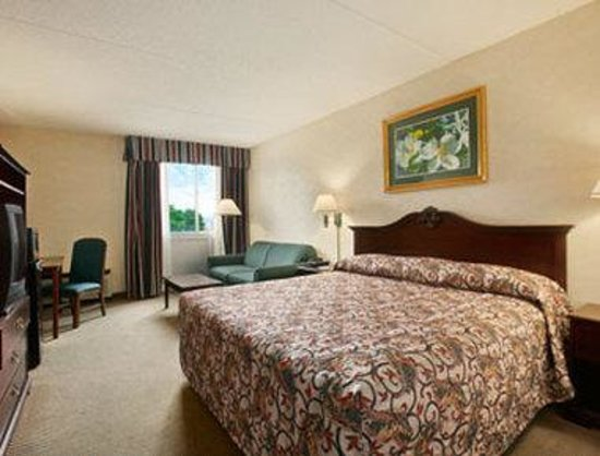 Ramada Inn and Conference Center: Standard King Bed Room