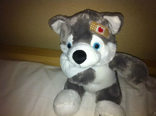 "Great Wolf Lodge: The ""Boo Boo Wolf"" given to my son.  (See!  You thought I was making this up.)"