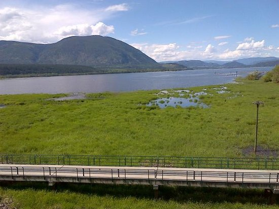 Salmon Arm, Canada: View of Shuswap Lake and Osprey nest from our balcony
