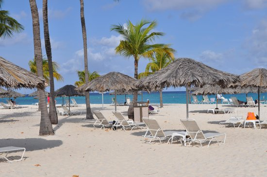 Bucuti & Tara Beach Resorts Aruba: The Beach  2012