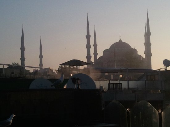 Albatros Premier Hotel: View of Blue Mosque from top terrace deck at dawn