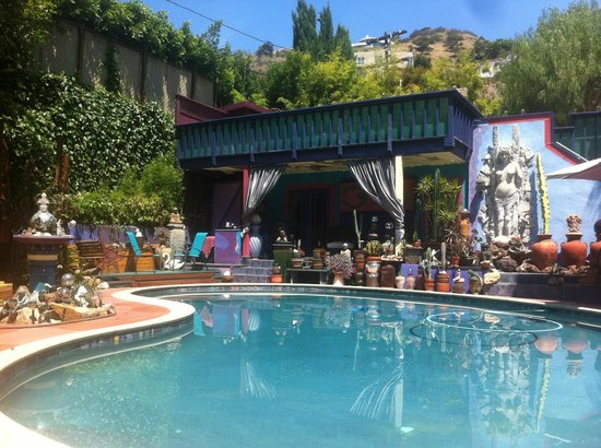 Hollywood Bed & Breakfast: View poolside