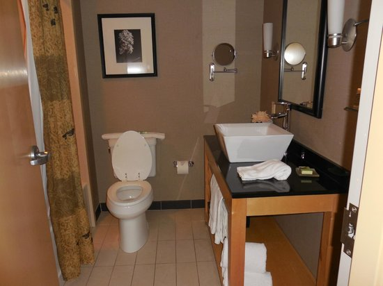 Dania Beach, FL: Nice size bathroom - great shower