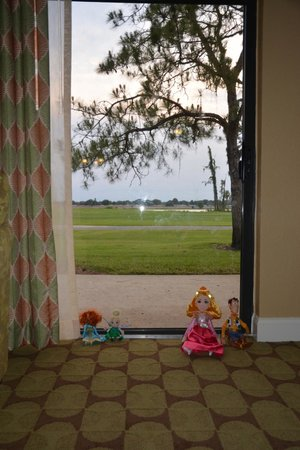 Holiday Inn Club Vacations Orlando - Orange Lake Resort: Golf Course and Disney . . animals