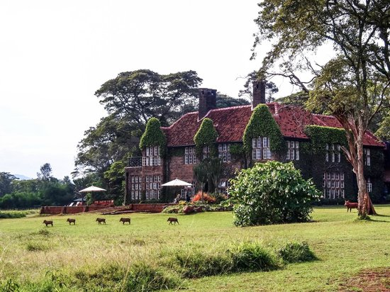 ‪‪Giraffe Manor‬: Old manor house‬