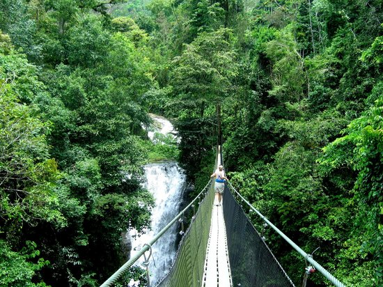 Quepos, Costa Rica: Suspension Bridge
