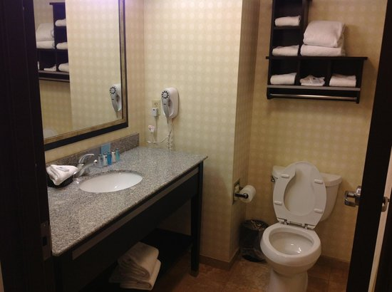 Romulus, MI: Nice, big bathroom.